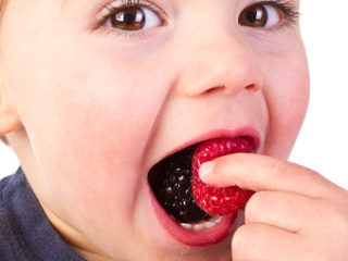 Little Boy Eating Berry
