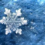 snowflakes-8__8801