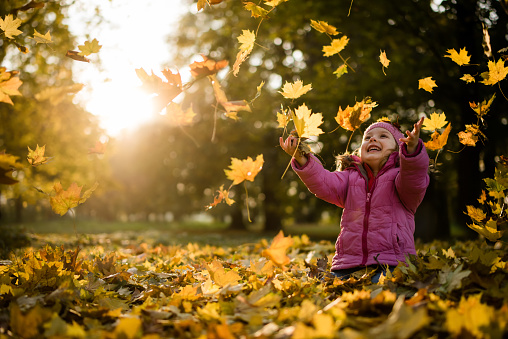 Joyous little girl throwing up autumn leaves