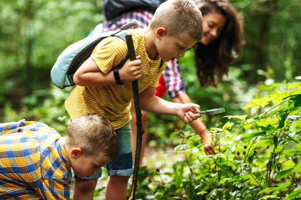 деца, родители, природа
