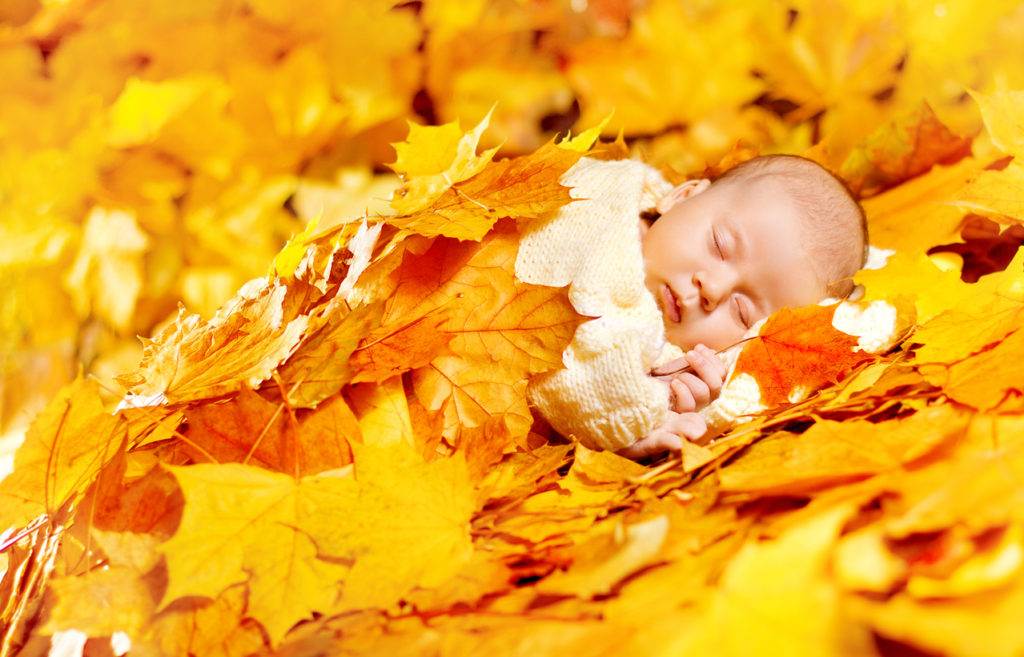 Autumn Baby Sleeping, Newborn Kid in Fall Yellow Leaves, Asleep New Born Child