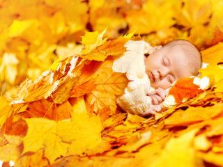 Autumn Baby Sleeping, Newborn Kid in Fall Yellow Leaves, Asleep New Born Child